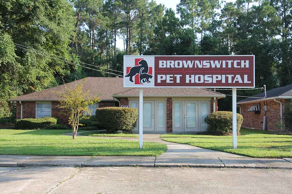 Brownswitch hospital